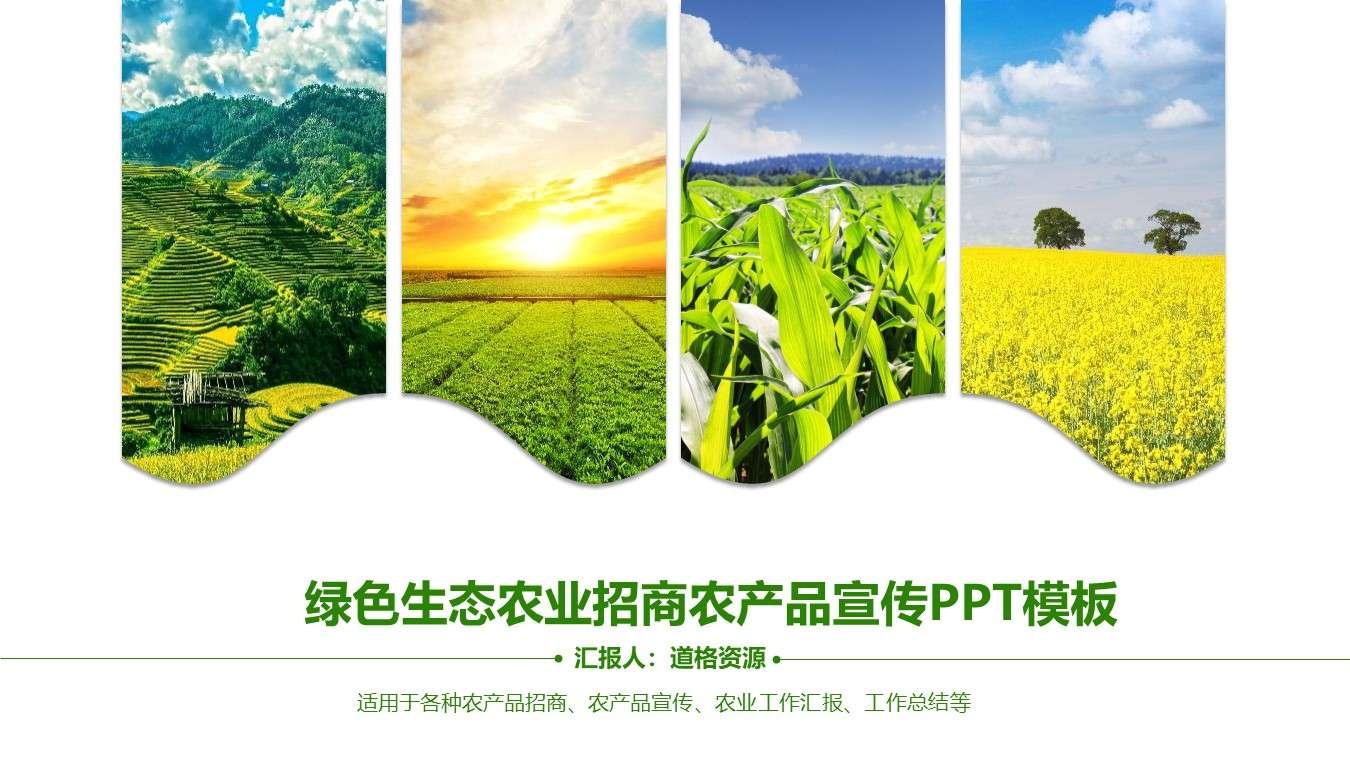 绿色生态农业招商农产品宣传PPT模板