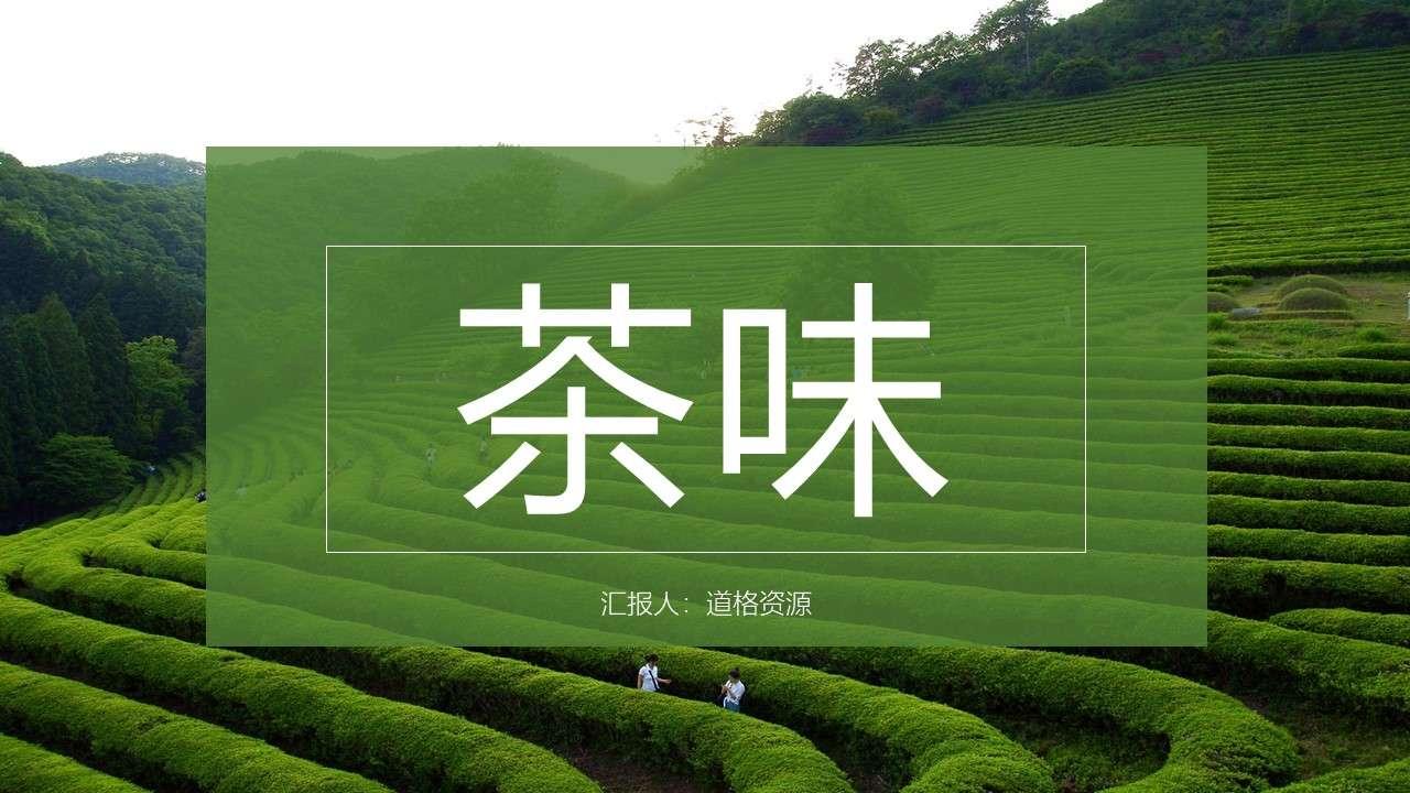 绿色杂志风禅茶一味产品介绍PPT模板